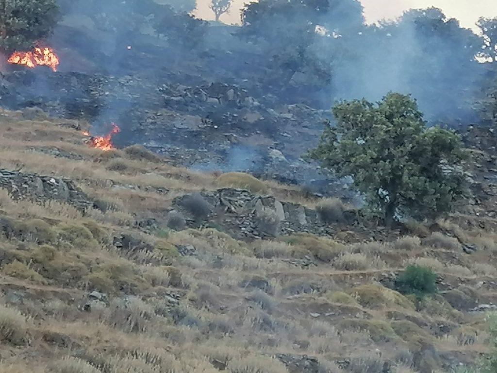 Ξέσπασμα πυρκαγιάς στην περιοχή της Πλαγιάς